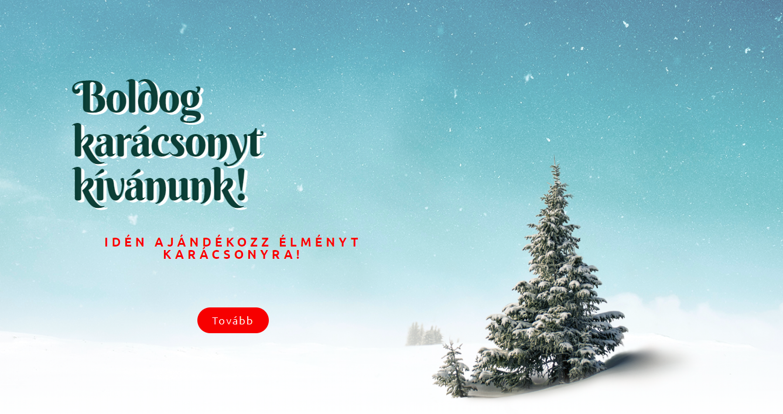 TeslaElmeny.hu/Karácsony